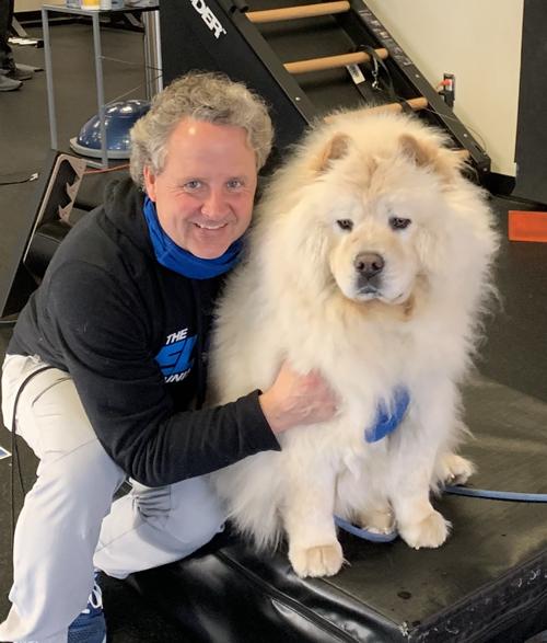 Flint the dog helps at The Elite Training Studio